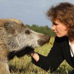 Kinder Tiere Kommunikation / Corinna Michelsen mit Willy, dem Wildschwein