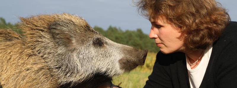 Corinna Michelsen - Kindercoach und Tierheilpraktikerin
