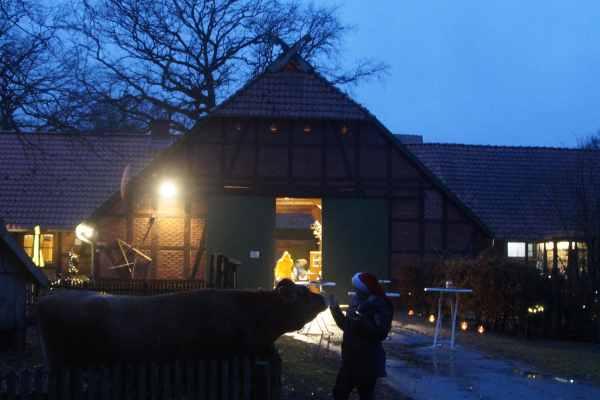 Weihnachten in Bokelberg 2018