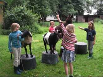 Zirkus spielen auf dem Tierhof in Bokelberge